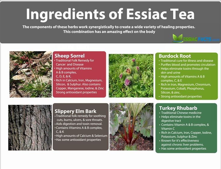 Ingredients-of-Essiac-Tea