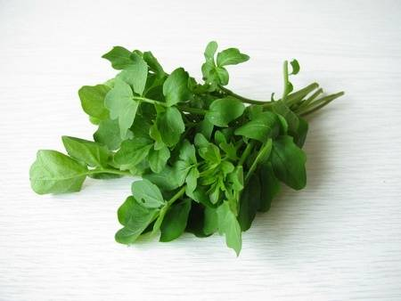 watercress-benefits-for-health-1